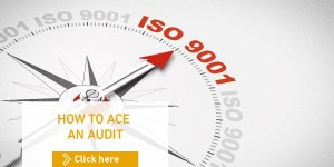 HOW TO ACE AN AUDIT