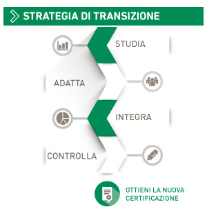 Strategia di Transizione