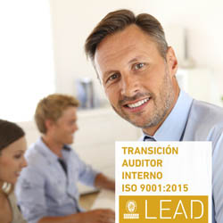 E-learning Auditor interno
