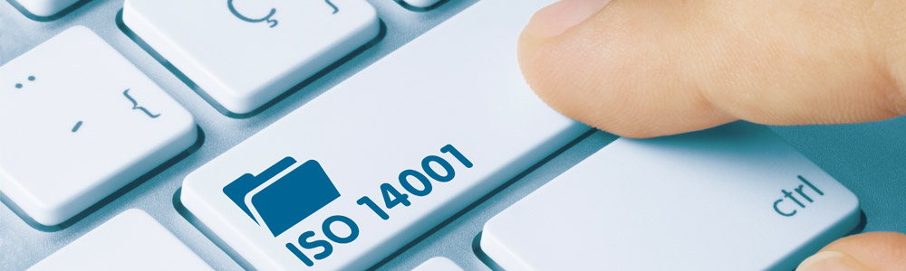 ISO 9001:2015 Clause 1 Actions to address risks and opportunities, explained